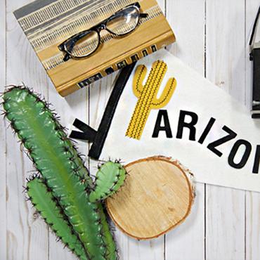 Arizona Pennant